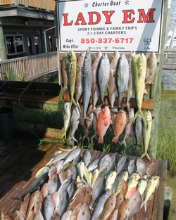 2 and 3 day fishing trips destin florida for Destin florida fishing report